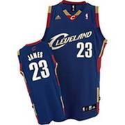 adidas Cleveland Cavaliers LeBron James Swingman Jersey (Lg)